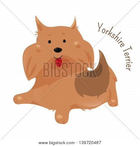 Yorkshire terrier isolated on white. It has a grey, black, and tan coat, and the breed's nickname is Yorkie. Domesticated canid. Part of series of cartoon puppy species. Child fun pattern icon. Vector