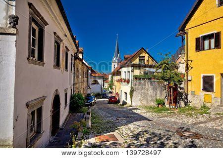 Cobbled old steet of Ljubljana capital of Slovenia