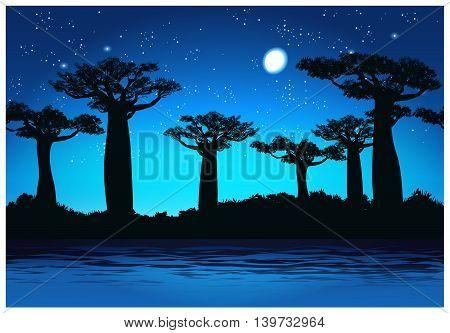 Vector illustration Baobab trees at night. Seamless horizontally if needed