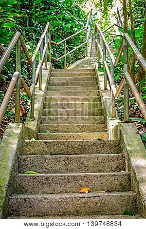 Stairway through the lush jungle setting of Wahiawa Botanical Gardens on Oahu Hawaii