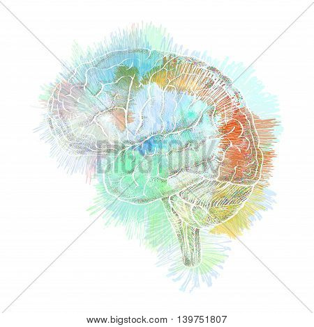Storm of thoughts in the brain abstract illustration concept of association and human creativity
