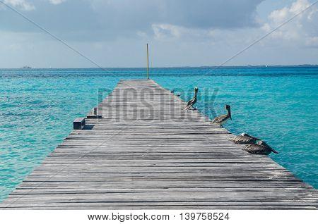 Píer sobre o mar do caribe mexicano