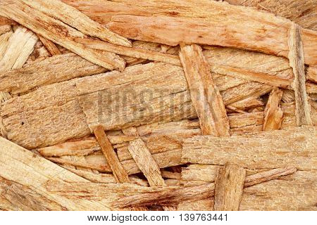 closeup macro of plywood texture for background