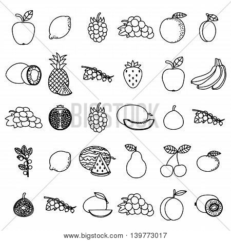Hand drawn fruits set on white background. All kinds of fruits and berries. Graphic art for coloring book or decoration.