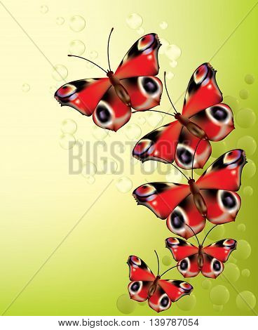 Beautiful bright red butterflies flying on green background