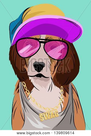Dog dressed up in hip hop style