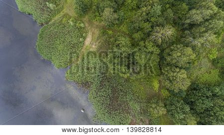 Summer Landscape. Green Trees At Riverbank In Poland.