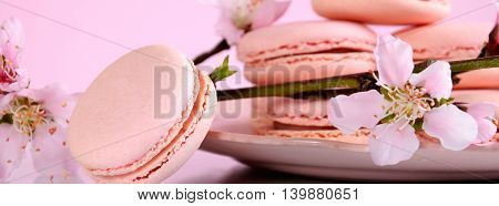 Strawberry Macarons Closeup Banner