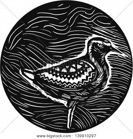 Tribal Art style illustration of a Pacific golden plover Pluvialis fluva or kolea a medium-sized plover standing viewed from the side set inside circle.