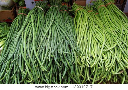 Chinese green  long beans banded awaiting market