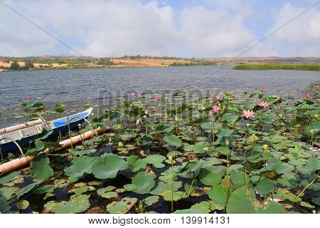 tourism boat in lotus bau trang lake muine vietnam