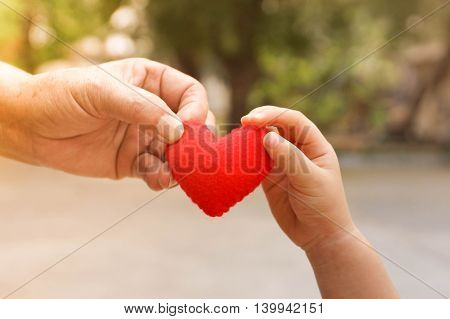 old hand of the elderly and a young hand of a baby holding a red heart together