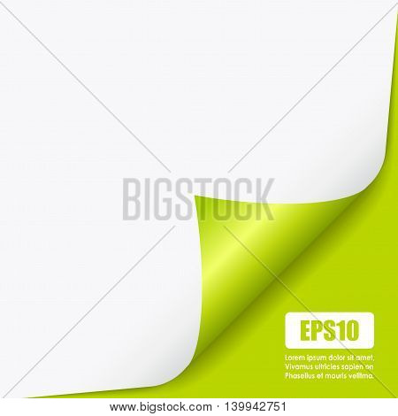 Fold curled page corner isolated on white background