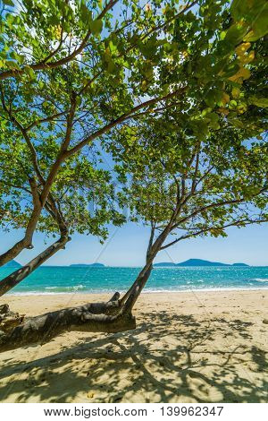 Amazing Tropical beach with coconut trees