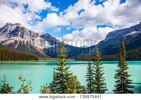 The emerald-green lake surrounded by a coniferous forest. Magic Emerald Lake in the Canadian Rockies