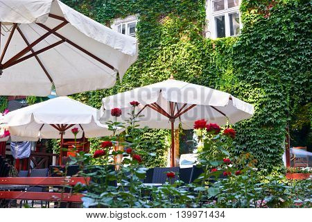 summer street cafe interior in green city park, ornate with flowers and decorative elements, white umbrella