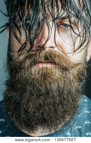handsome sexy bearded young man hipster with long beard and mustache has wet hair on serious hairy face closeup