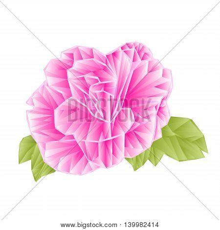 Camellia Japonica pink flower polygons on a white background vektor illustration