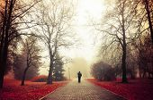 Autumn nature -foggy autumn park. Autumn alley in dense fog with lone passerby- foggy autumn landscape with autumn trees and red fallen leaves. Autumn alley in dense autumn mist. Soft filter applied. poster