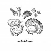 Shellfish mussels scallops oysters barnacles. Seafood. Vector illustration. Isolated image on white background. Vintage style. Hand drawn seafood image. poster