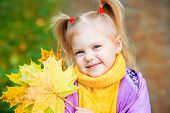 fall happy yellow autumn park girl caucasian nature red beautiful toddler small outside cute season little child childhood colorful outdoor september color cheerful october baby pretty leaf kid bright adorable infant young forest jacket people green natur poster