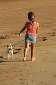 Young girl walking her dog along the water's edge at the beach late afternoon golden light poster