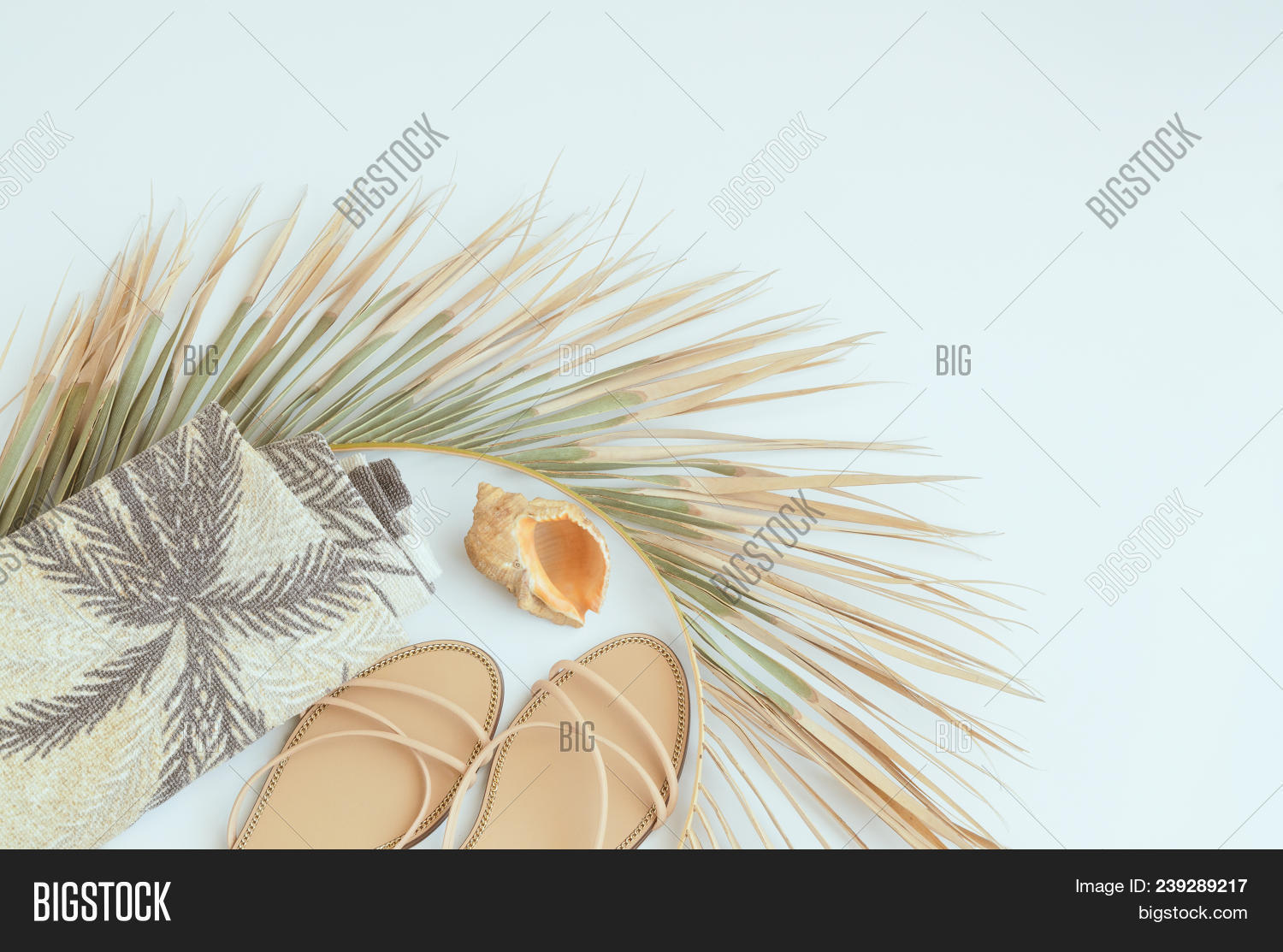 8f314ca68f9ac Summer vacation background. Top view of palm leaf