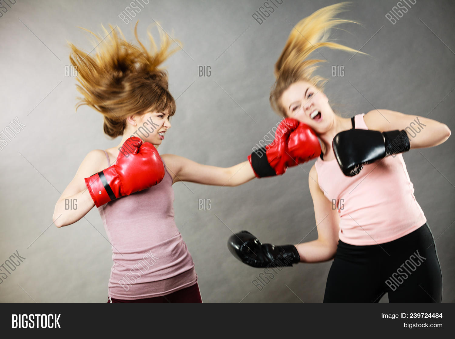 5505fa38b Two Agressive Women Wearing Boxing Gloves Having Argue Fight Being Mad At Each  Other. Female