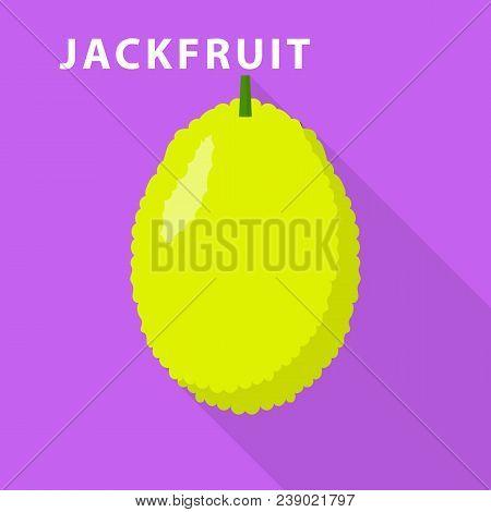Jackfruit Icon. Flat Illustration Of Jackfruit Vector Icon For Web Design
