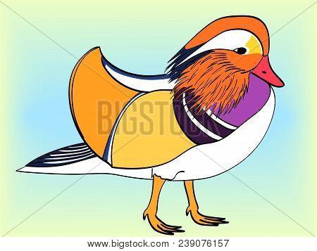 Pop Art. Vector illustration of imitation retro comic style. The bird, Mandarin duck, goose. poster