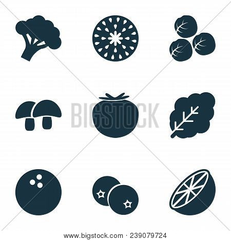 Fruit Icons Set With Acorn, Coco, Spinach And Other Coconut Elements. Isolated  Illustration Fruit I