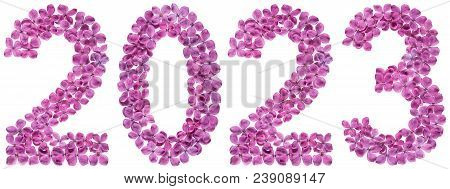 Numeral 2023 From Flowers Of Lilac, Isolated On White Background