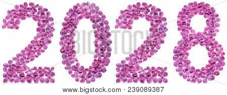 Numeral 2028 From Flowers Of Lilac, Isolated On White Background