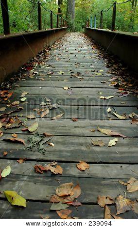 Eine Brücke im Herbst
