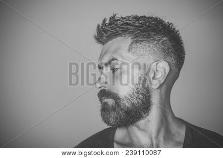 Man With Bearded Face Profile And Stylish Hair Pose On Grey Background. Barber, Barbershop, Hairdres