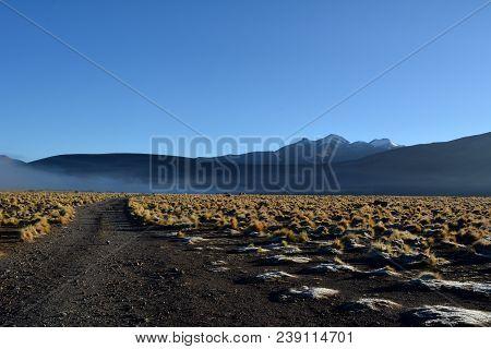 Atacama desert - geysers valley in El Tatio in Chile poster