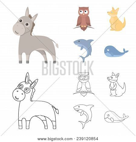 Donkey, Owl, Kangaroo, Shark.animal Set Collection Icons In Cartoon, Outline Style Vector Symbol Sto