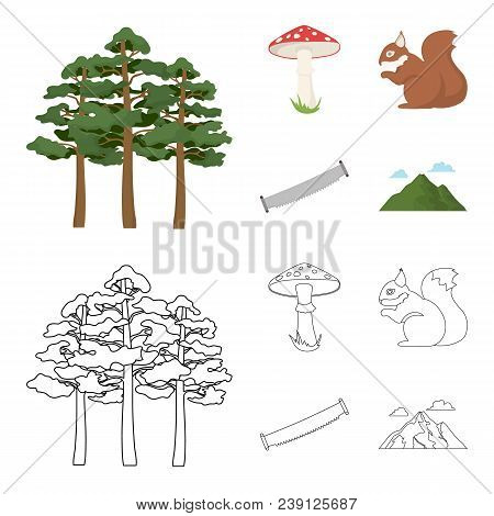 Pine, Poisonous Mushroom, Tree, Squirrel, Saw.forest Set Collection Icons In Cartoon, Outline Style
