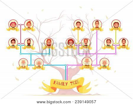 Family Genealogy Infographic Avatars Of Relatives With Color Connection Lines On Tree Background Car