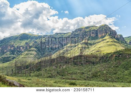 The View From The Camp Site At Injisuthi In The Kwazulu-natal Drakensberg. Van Heiningen Pass Is In