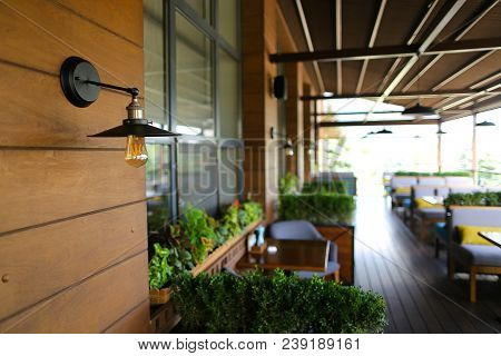 Close Up Electrolier And Retro Lamp In Cafe Background, Room Plants. Concept Of Interior Design And
