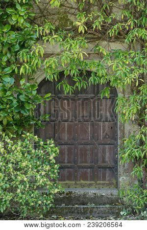 Beautiful Old Victorian Mansion Entrance Door Surrounded By Plants And Tree