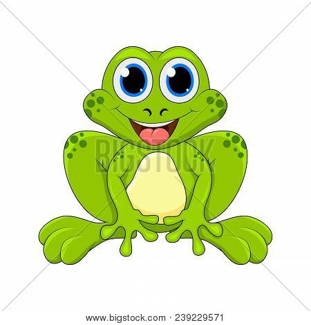 Cartoon Frog Cute Character Isolated On White Background.