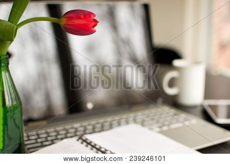 Coneptual working from home, freelance work, tranquility, positive home work desktop, with blank notebook and fresh tulip flowers on desk with laptop, mobile phone device, computer screen, keyboard and work space for telecommuting and remote work modern