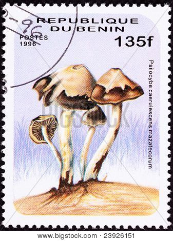 Benin Postage Stamp Psilocybin Psychedelic Mushroom Psilocybe Caerulescens Var. Caerulescens-