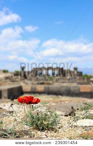 Ruins Of Zvartnots Temple In Yerevan, Armenia.