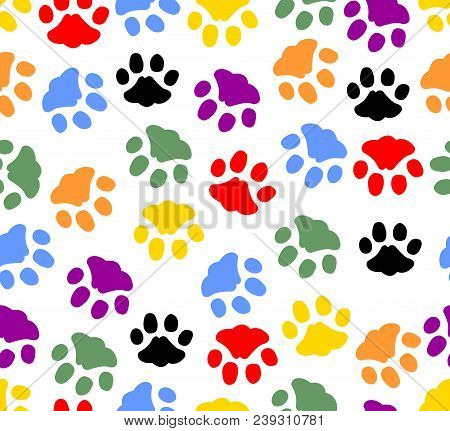 Beautiful Background With Colored Prints Of Cat Paws. Colorful Cat Footprints On White Background. V