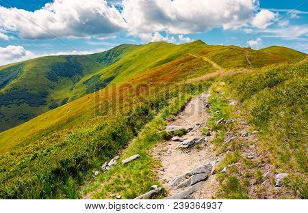 Path To The Top Of The Mountain. Beautiful Summer Landscape. Great Destination To Travel. Location V