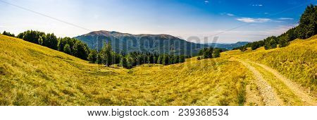 Panorama Of Carpathian Mountains In Summer. Mountain Apetska In The Distance. Road Through Grassy Me