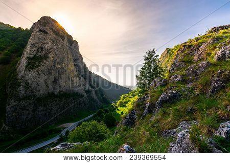 Road In Canyon Of Trascau Mountains In The Morning. Lovely Scenery Of Carpathian Landscape In Spring